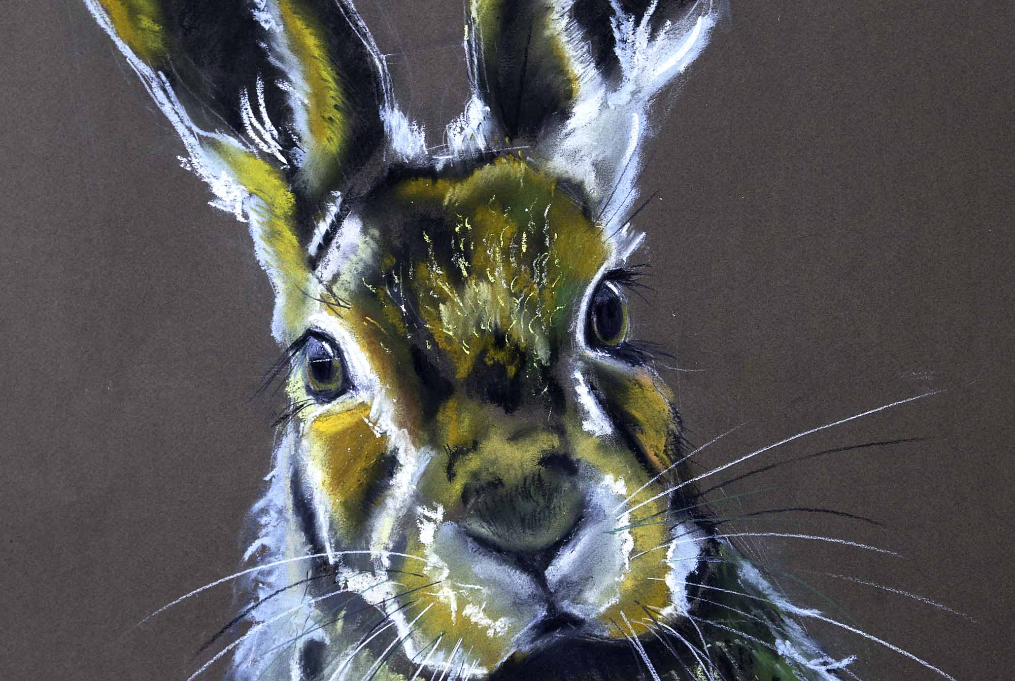hare yellow wild pastel portrait crop