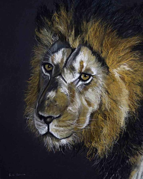 Battle Scarred Leo lion mane pastel portrait