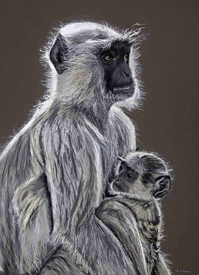 LOVE MOTHER AND BABY - langur monkeys in India - pastel portrait