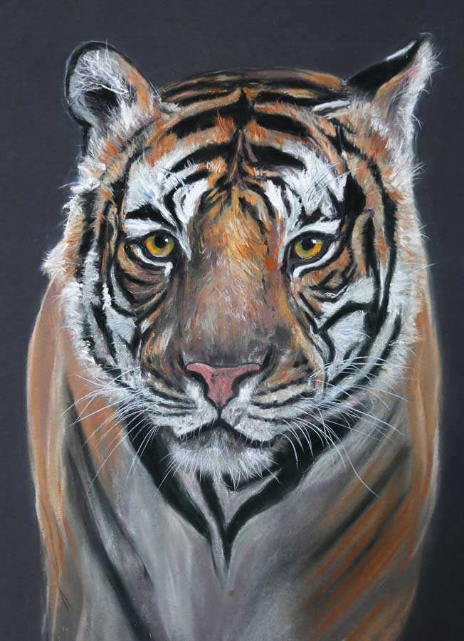 Look into my eyes Pastel Painting by Ros Rouse
