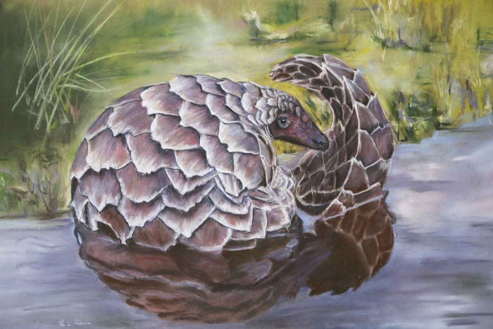pangolin water mauve blue green Ros Rouse Pastel painting